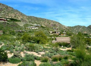 Colonia Miramonte Homes For Sale In Paradise Valley