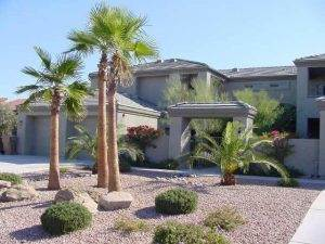 Palm Tree Villas Homes For Sale In Fountain Hills