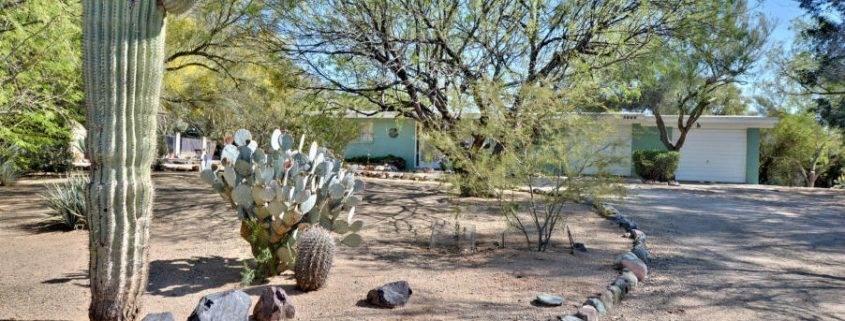 Desert Forest Park Homes For Sale
