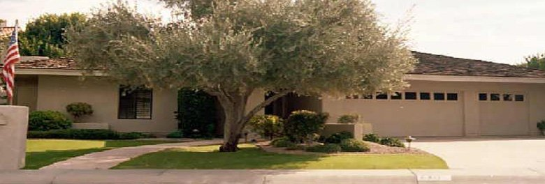 Cinnabar Court Homes For Sale In Phoenix