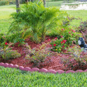 Creative Ways to Enhance Your Phoenix Landscape