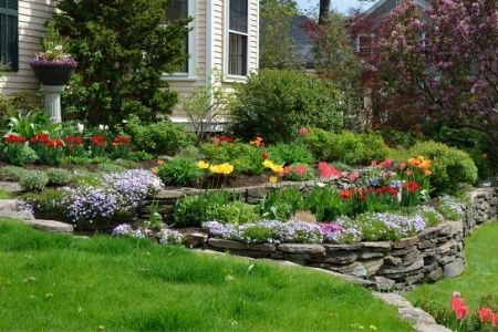 When You Should Hire a Landscaping Professional